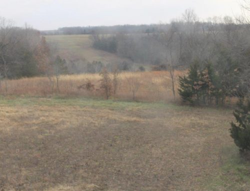 60-acres, more or less,  $250,000.00  5325 Mt. Moriah Rd., Pilot Grove, MO 65276