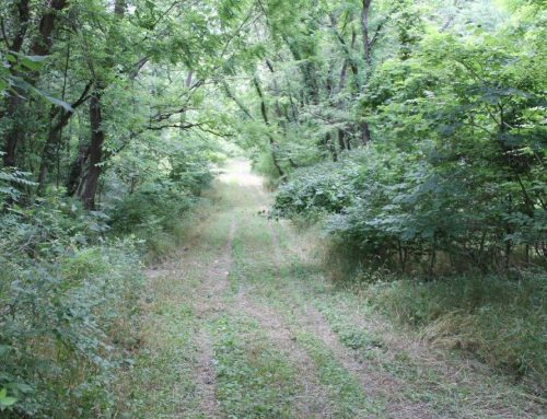 SOLD 2020….$80,000.00…..W. Ashley Rd., Boonville, MO 65233   19.76 Acres, m/l